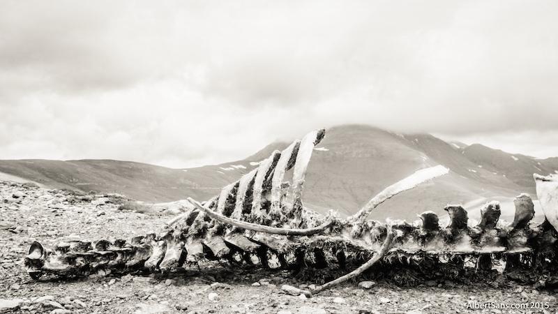 montaña muerta
