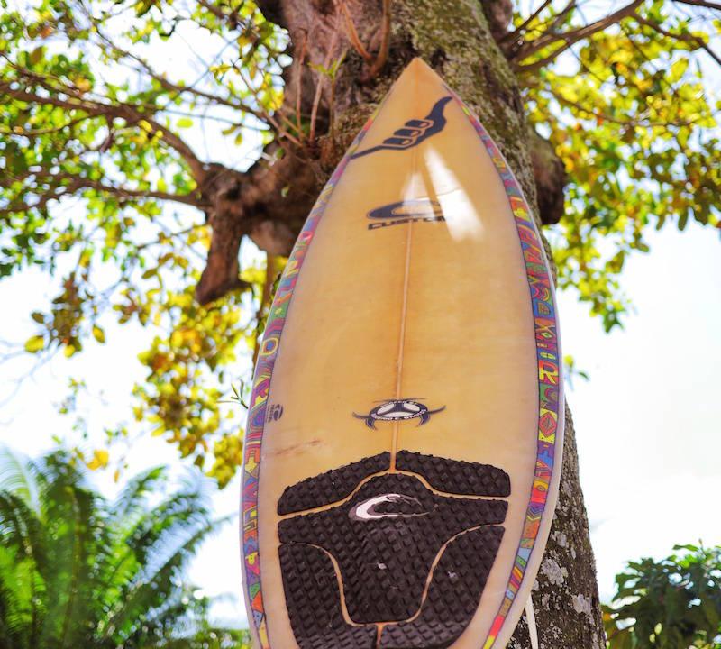tabla surf arbol