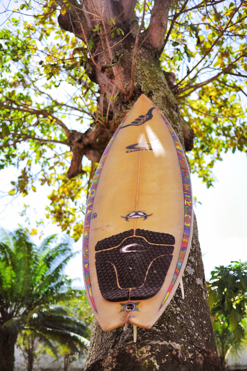 tabla surf arbol