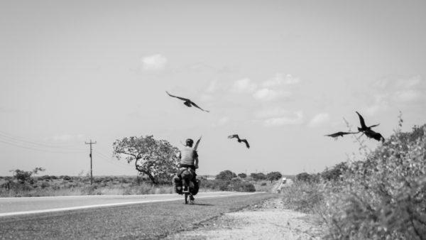 cuervos cicloturismo miedos